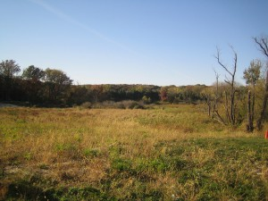 Lot 47 Rainy Brook Way, Crown Point, IN 46307